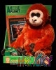 5351-animal-planet-plys-dvd.jpg